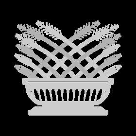 Durva - The Durva Grass Buddhism symbols