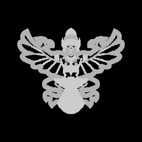 Garuda – Half bird Half human Buddhism symbol