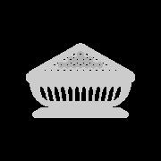 Sarshapa - The Mustard Seed symbol