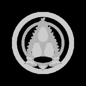Triratna Buddhism symbol