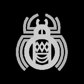 Kokyangwuti Hopi symbol