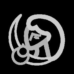 Cavillace Inca symbol