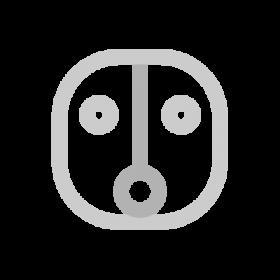 Ahau Maya symbol
