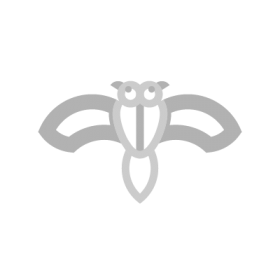Huginn and Muninn Norse symbol