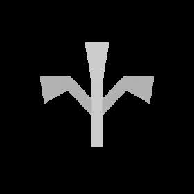 Prov Slavic symbol