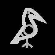 Bird Taino symbol