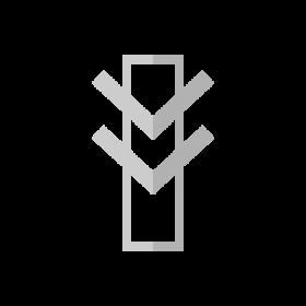 Inner Power Native Rock Art symbol