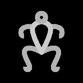 Pillan Mapuche Symbols