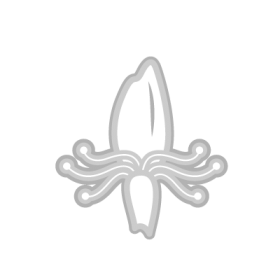 Honeysuckle Flower symbol