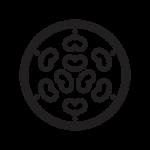 Chosokabe Japanese Symbols